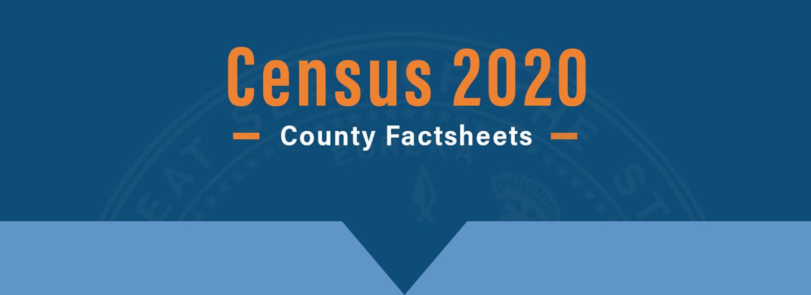Census 2020 Fact Sheets