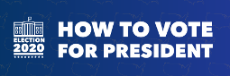 How to Vote for President